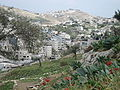 View to Silwan and Wall.jpg
